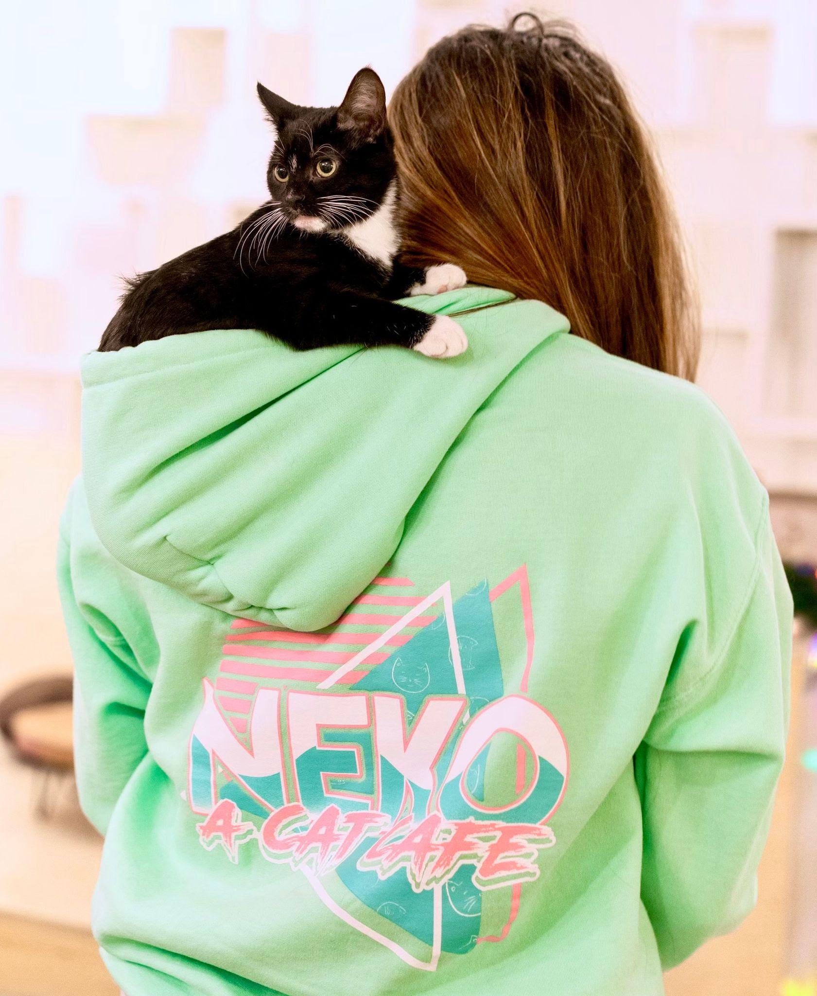 neko-blog-last-chance-insert